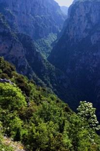 Весенние склоны каньона Викос.