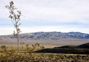 Долина Eureka. Death Valley national park.