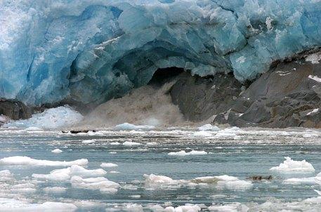 Подледниковая река и группа сивучей на льдине.