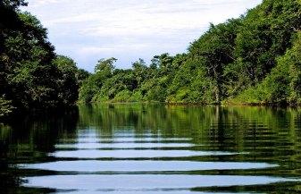 Спокойные воды ручья Spanish Creek, где водятся пресноводные крокодилы. Заповденик Crooked Tree.