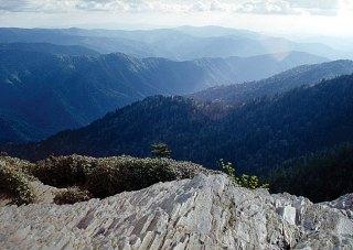 Образование голубого тумана. Вершина горы Mount LeConte.