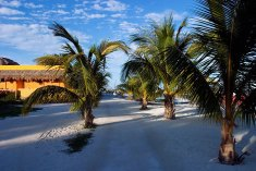 Песочные улицы единственной деревни на острове. Остров Caye Caulker, Карибский бассейн.