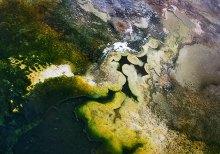 Разноцветные водоросли в одном из водоемов на Гейзеровом холме. Нет, это не аэрофотосъемка :)
