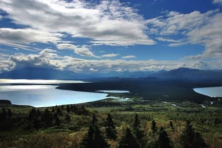 Лесная перемычка между озером Naknek lake и Iliuk Arm.