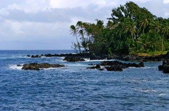 Пальмы на кончике полуострова Ke'anae.