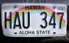 Номер на нашем гавайском джипе.