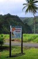 Реклама лавочки, торгующей свежеиспеченным банановым хлебом.