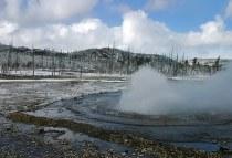 Сварливый гейзер (Vixen geyser). Norris geyser basin.