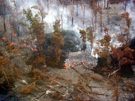 Сжигающая все на своем пути лава. Снимок с вертолета.