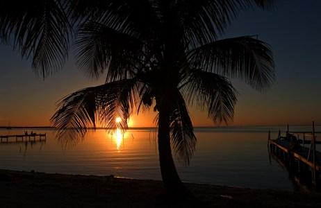 Кокосовый закат. Остров Caye Caulker.