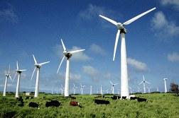 Ветряные мельницы по дороге на South Point.