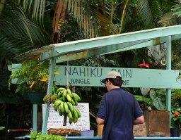 """Придорожная лавочка самообслуживания """"Nahiku rain""""."""