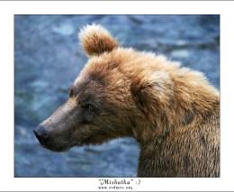 Портрет медвежонка-девочки.