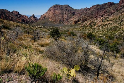 Долина Chisos Basin.