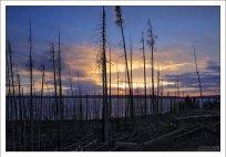 Восточная граница озера Йеллоустоун.