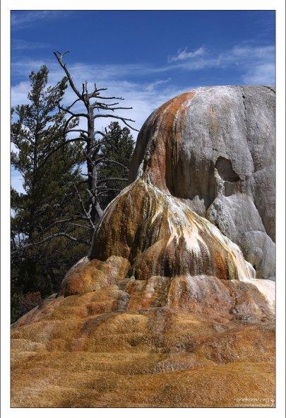 """Лицо"" мамонта Orange Spring Mound."