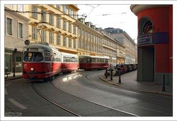 Венский трамвай на кольце Ringstrasse.