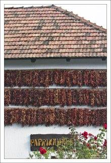 Связки сушеной паприки на стене дома в поселке Тихань.