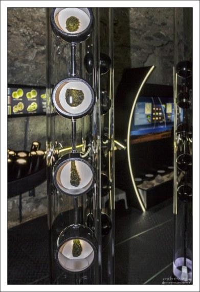 Влтавин считают природным аккумулятором энергии.