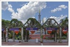 Американский зоопарк Lowry в китайских декорациях.