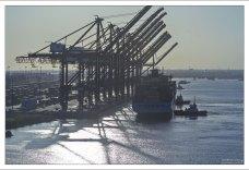 Ряд стреловых кранов в порту Галвестона.