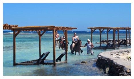 За отдельные деньги можно заказать конную прогулку по линии прибоя, снорклинг с гидом на рифе, или даже купание с ручным ягуаром.