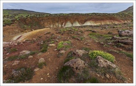 Яркая почва Селтуна.
