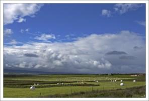 Большинство фермеров выбирает белый цвет для упаковки сена, потому как он сильнее отражает солнечный свет, и сено внутри остается менее подверженным температурным колебаниям.