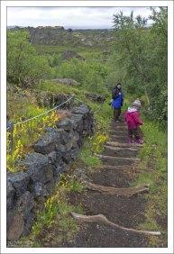Редкая для Исландии прогулка через лес (!).