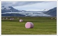 Сено в розовой упаковке на фоне ледника.
