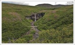 2-км тропа к водопаду Svartifoss.