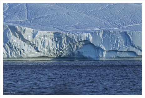 Поверхность некоторых айсбергов выглядит так, будто по ней проложены лыжные трассы.