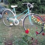 bicicleta-alfira-reconditionata-baia-mare