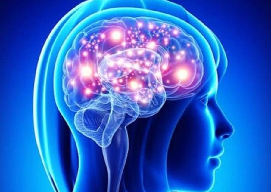 3 Reguli Pentru Un Creier Sanatos