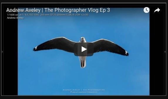 Vlog Ep 3