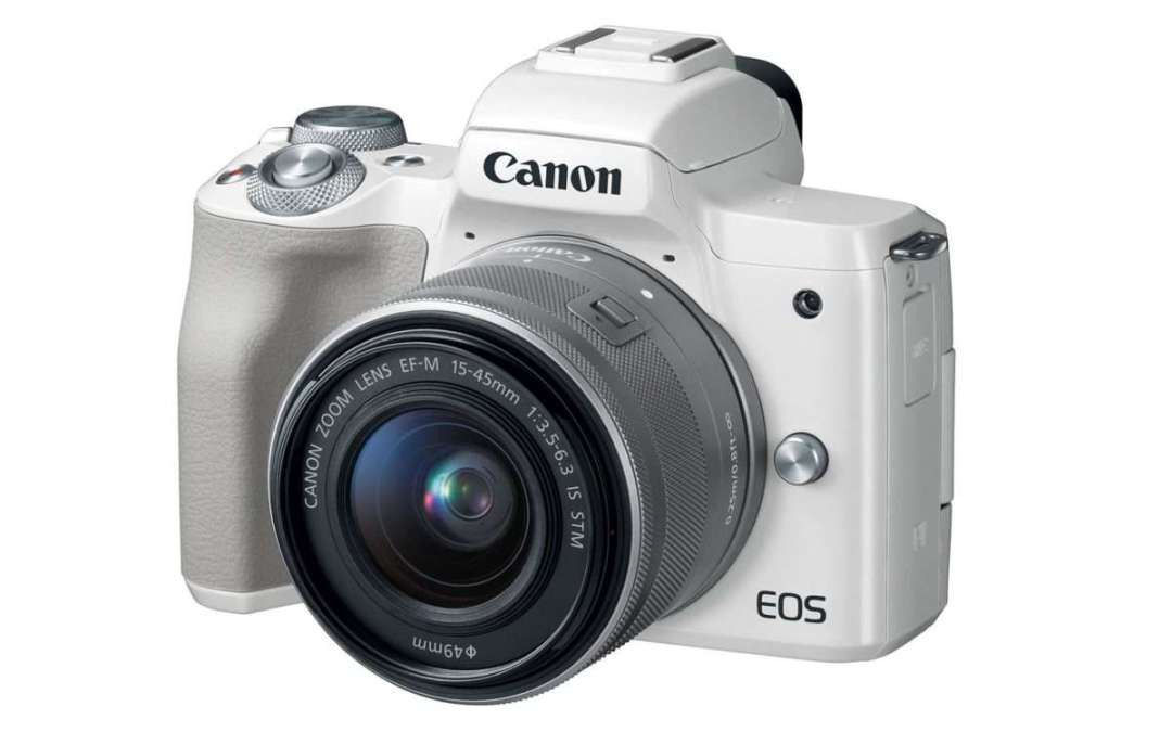 On safari with a Canon M50 mirrorless camera
