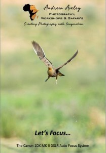 Canon 1 DX MK2 Focus EBook by Andrew Aveley, purchase on a secure online store
