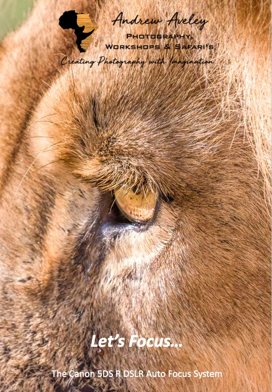 Canon 5DS R Focus EBook by Andrew Aveley, purchase on a secure online store