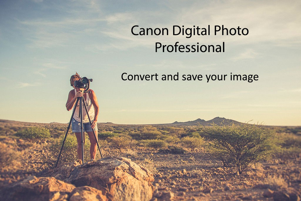Canon Digital Photo Professional – Convert and Save