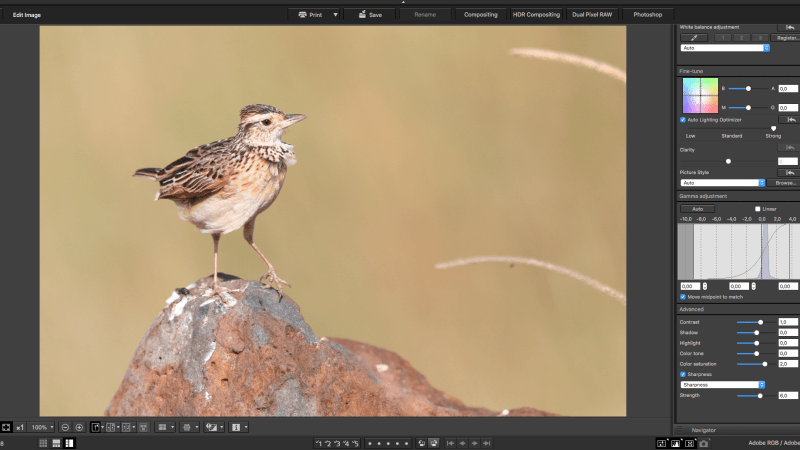 Canon DPP Image Editing
