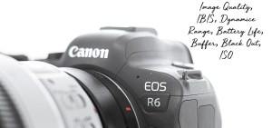 My Expert Review Canon R6 Technicals
