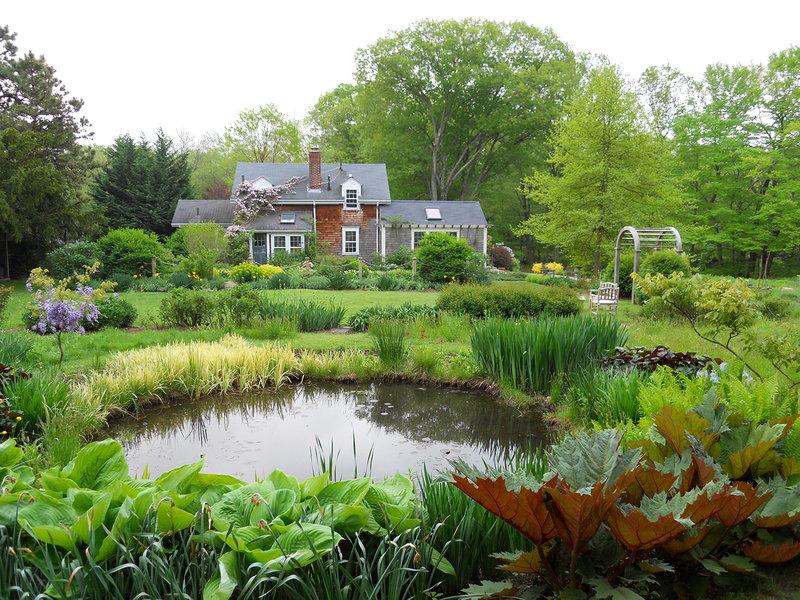farm pond andrew grossman landscape