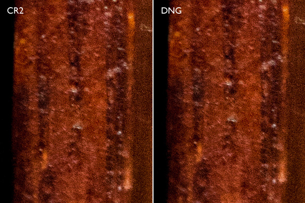 DNG vs CR2 – which is best?