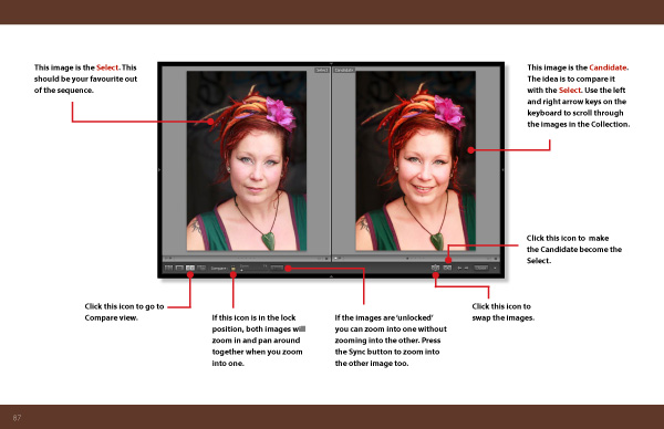Mastering Lightroom Book One: The Library Module inside