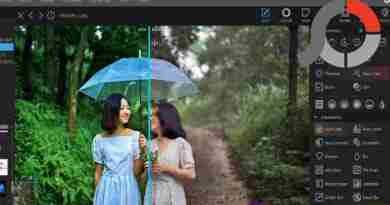 PhotoScape X Pro 2020