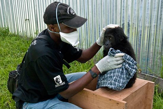 Ein junger Patient bei der Untersuchung