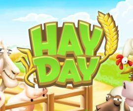 Play HayDay