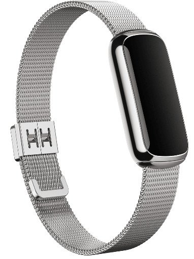 Fitbit Luxe stainless Steel Mesh Band