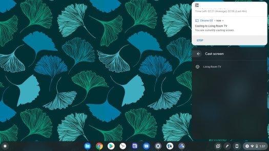 Casting Chromebook Screen