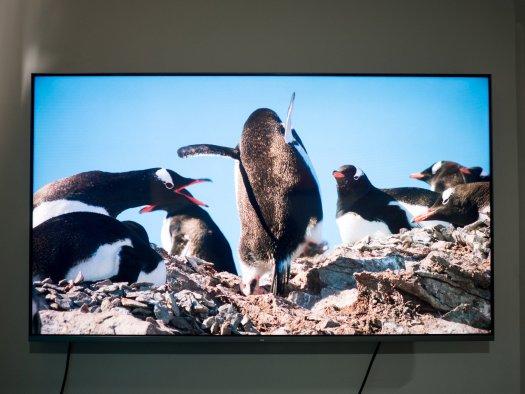 Xiaomi Mi QLED TV 4K 55 review